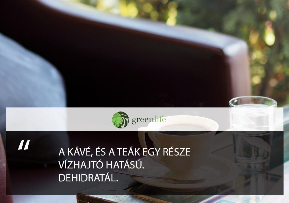 a-folyadek-hidratal-greenlife