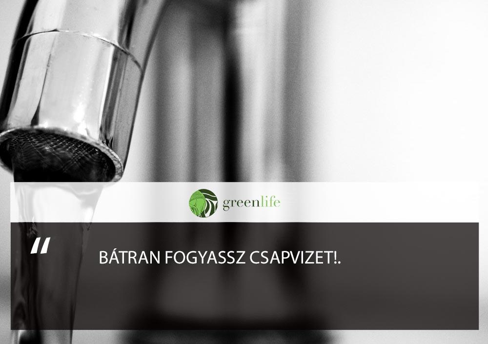 vizivas-csapviz-greenlife.hu