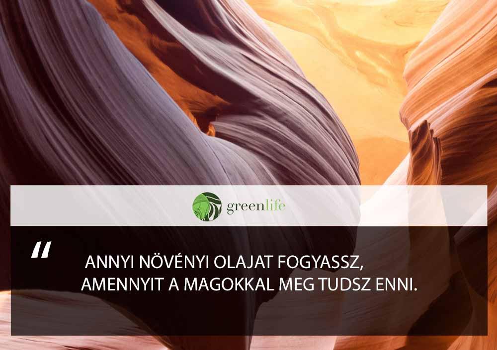 tevedesek-dieta-greenlife.hu