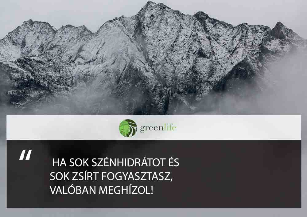 dieta-zsir-szenhidrat-greenlife.hu