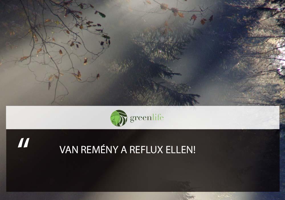 van-remeny-a-reflux-ellen-greenlife