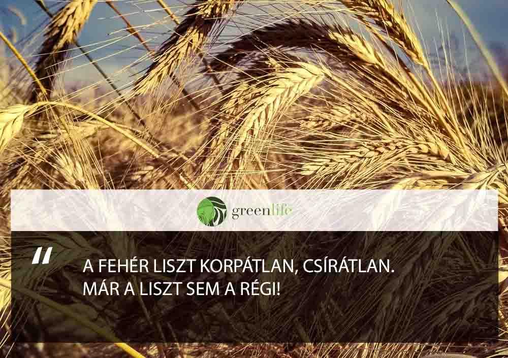buza-nem-a-regi-greenlife