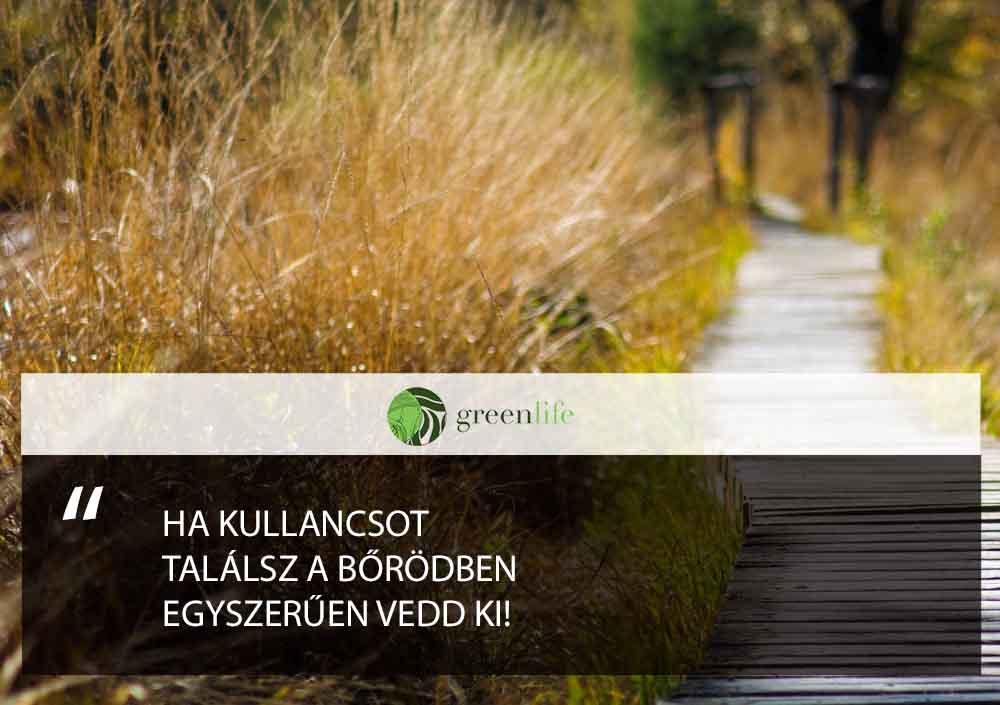 kullancs-vedd-ki-greenlife
