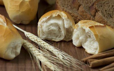 Kenyér. Egyél, ne egyél. Milyet vegyél? Tévhitek az egészséges kenyerekről.