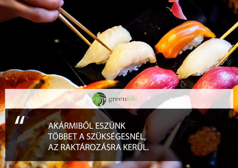 folosleges-raktarozodik-greenlife.hu