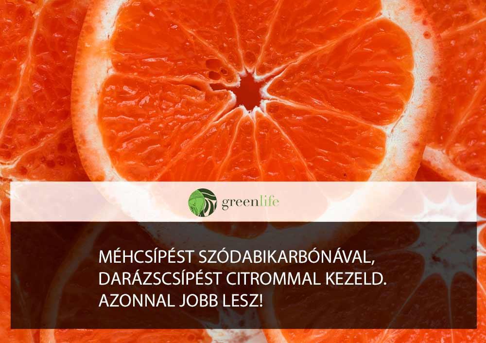 narancs-szelet-darazscsipes-ellen